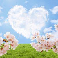ハート雲&桜